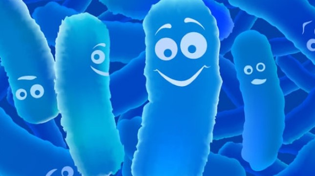 blog-probiotics3